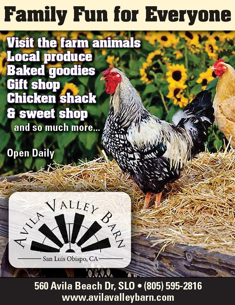 Avila Valley Barn QP VG55.jpg