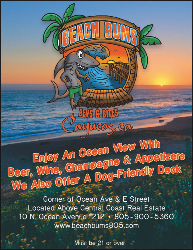 Beach Bum Rentals QP VG50.jpg