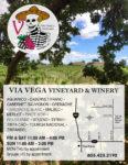 Via Vega QP VG50.jpg