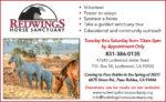 Redwings Horse EP VG52.jpg