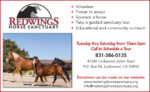 Redwings Horse EP VG50.jpg