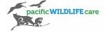 pacific wildlife.jpg