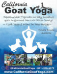California Goat Yoga VG49 2020.jpg
