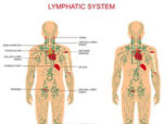 Lymphatic-Massage-Paso-Robles.jpg