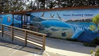Coastal_Discovery_Center_and_Mural_edited-1