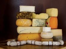 vivant_cheese