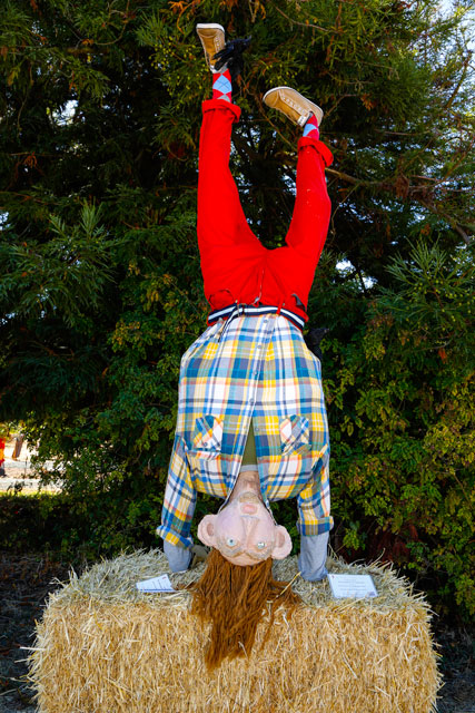 Hand Standing Scarecrow at scarecrow festival
