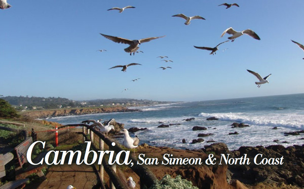 Cambria Travel Guide