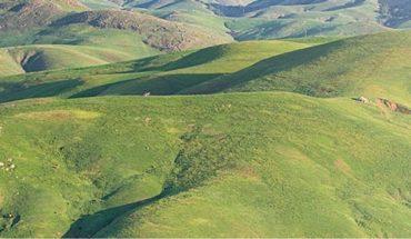Cayucos Land conservation