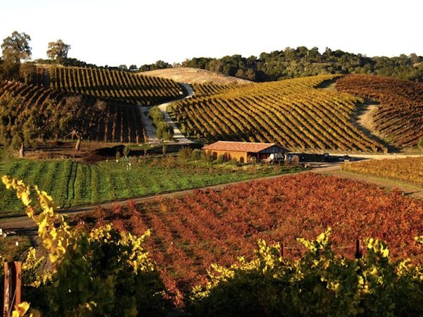 Wine Tours San Luis Obispo County