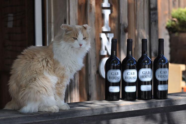 Hansen Winery