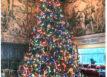 holiday tree at hearst castle