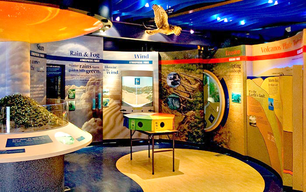 Museum of Natural History Morro Bay